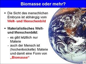 Biomasse-web